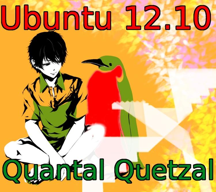 ubuntu 12.04 Torrnet